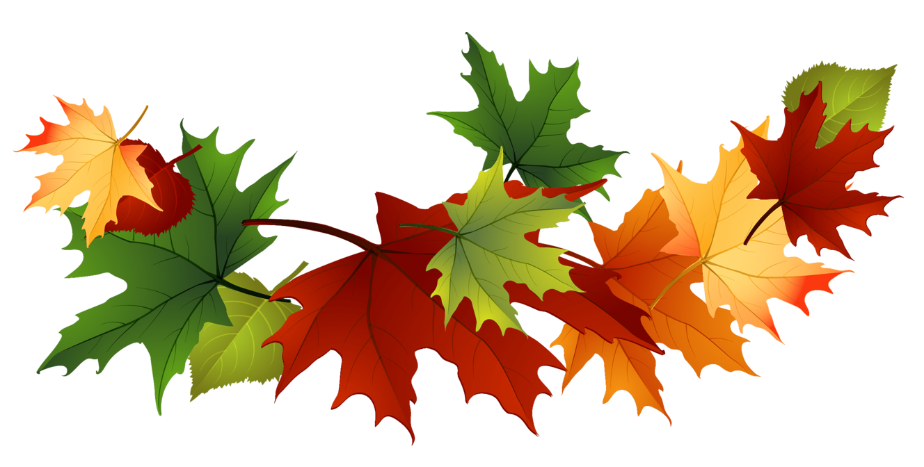 Leaf fall clipart #4