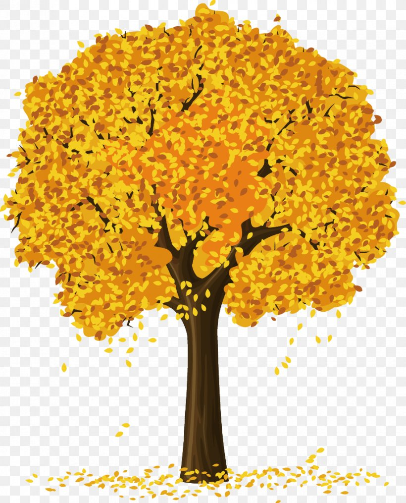 Tree Clip Art, PNG, 917x1136px, Tree, Autumn, Branch, Floral.