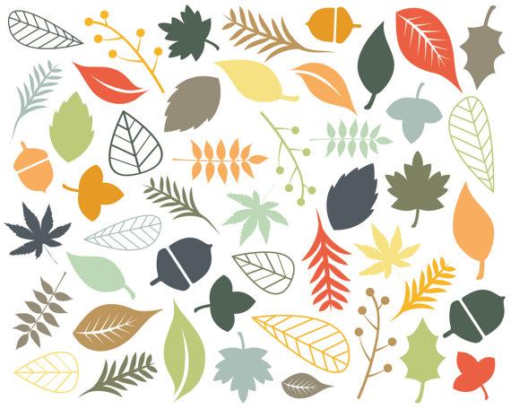 60% OFF SALE Digital Clipart Clip Art Leaf Clip Art Autumn Fall.