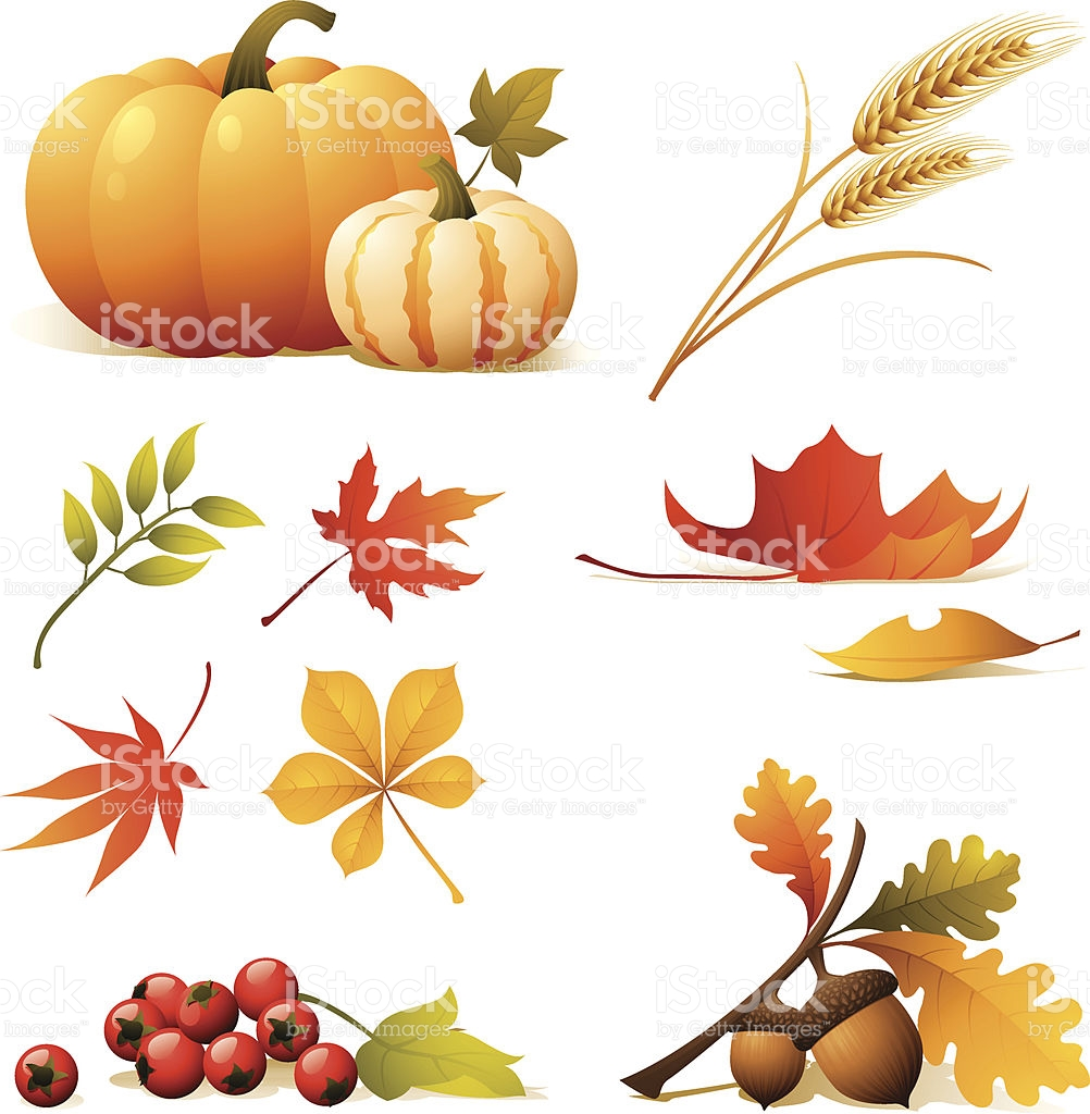 Nature Icons Relating To Autumn stock vector art 165974290.