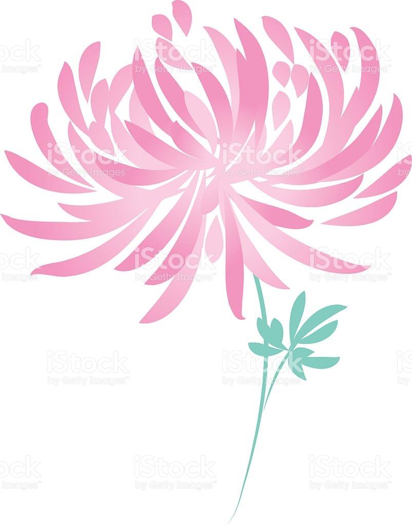 Autumn Chrysanthemum Flower stock vector art 579428752.