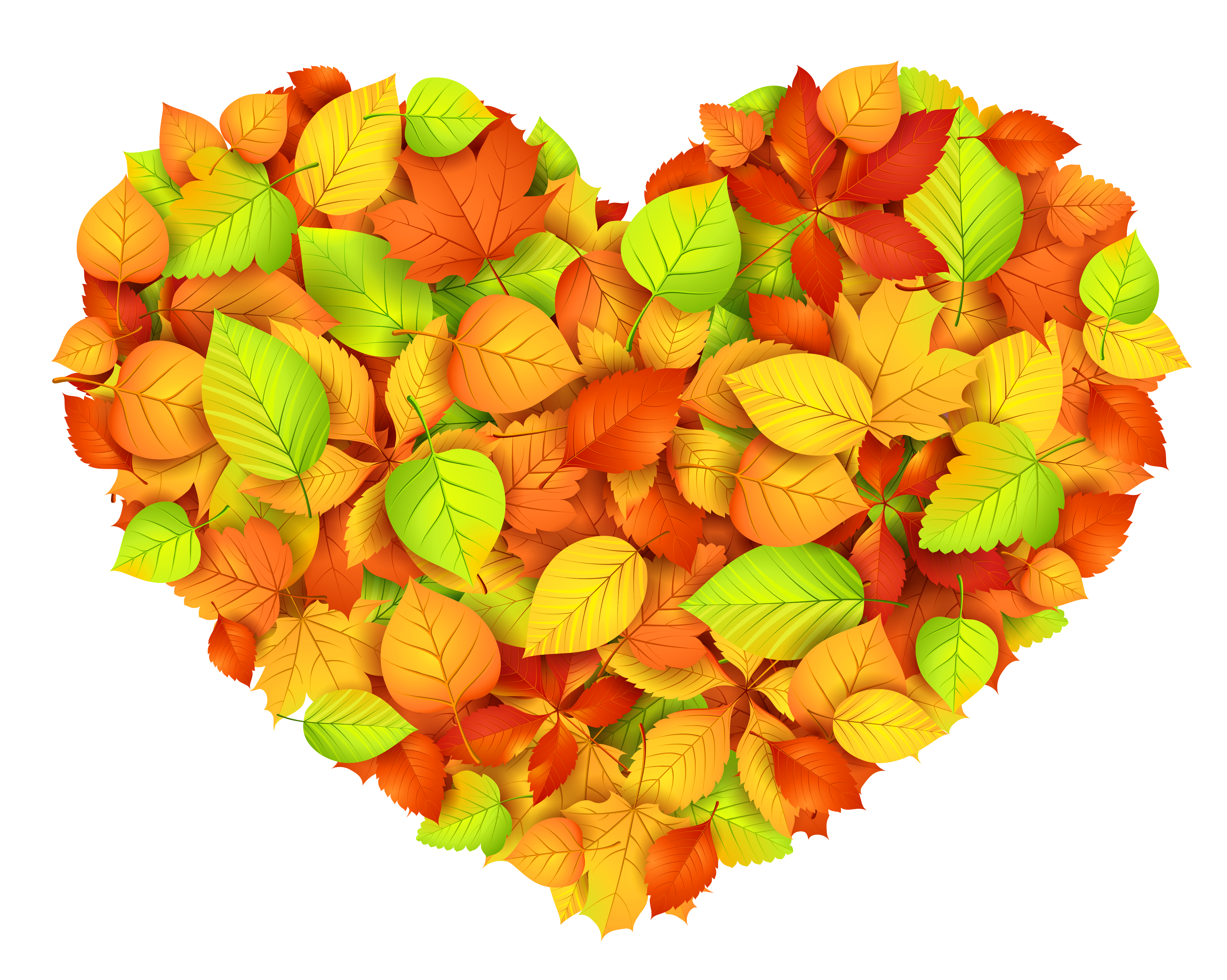 Heart of Autumn Leaves Decor Transparent Picture.