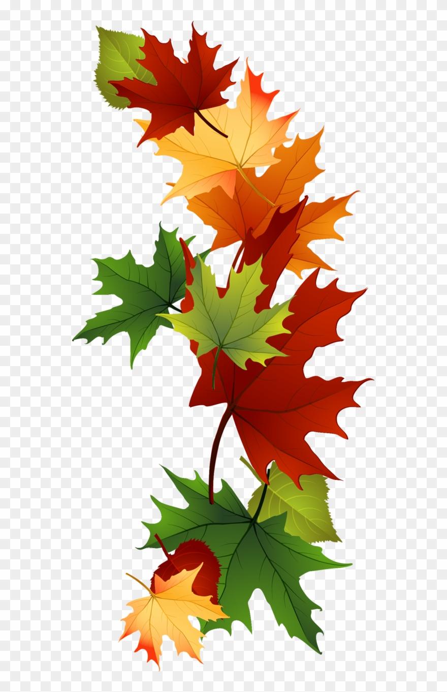 Leaf Fall Leaves Clip Art Beautiful Autumn Clipart.