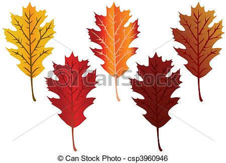 Clip Art Vector of Fall Leaves.