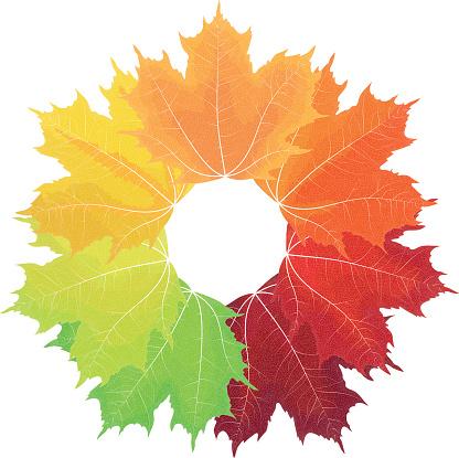 Autumn colors clipart.