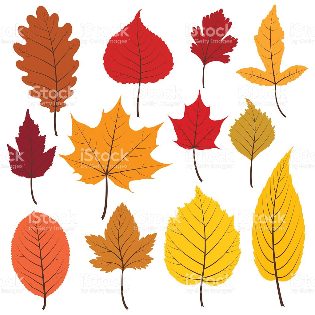 Autumn Colours Clipart.