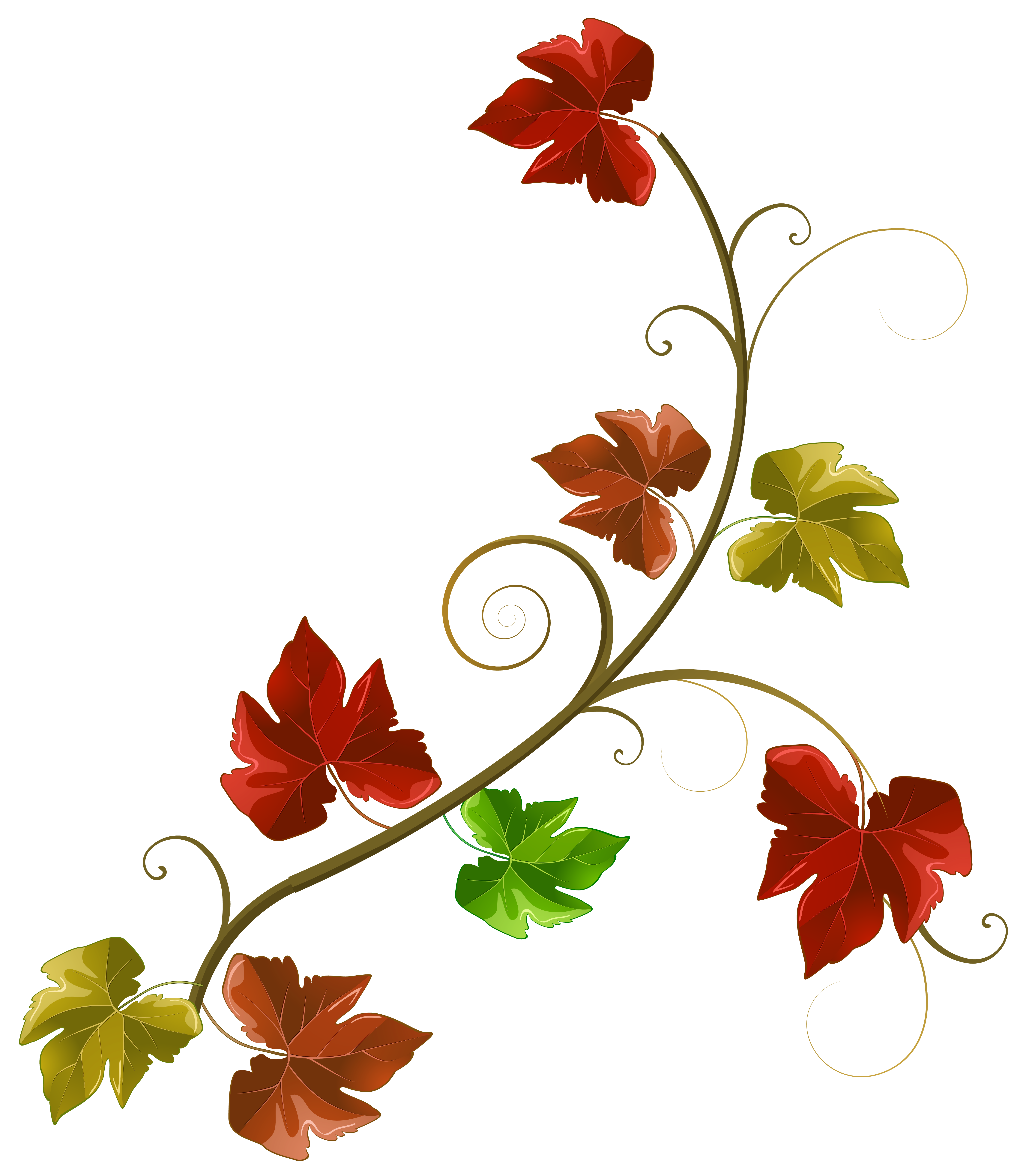 Autumn Leaves Decoration Clipart PNG Image.