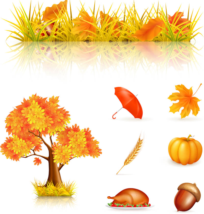 Fall decorations clipart.