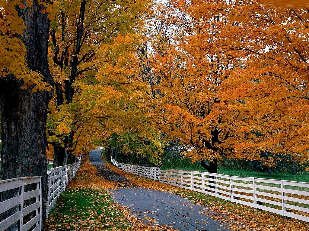 Fall Scenes Clip Art.