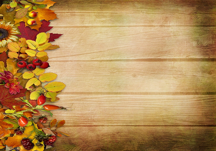 HD wallpaper: red and yellow fruit clip art, autumn, leaves.