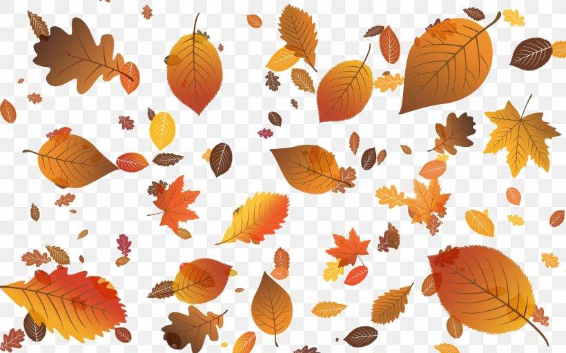 Autumn Leaf Color Autumn Leaf Color Desktop Wallpaper Clip.