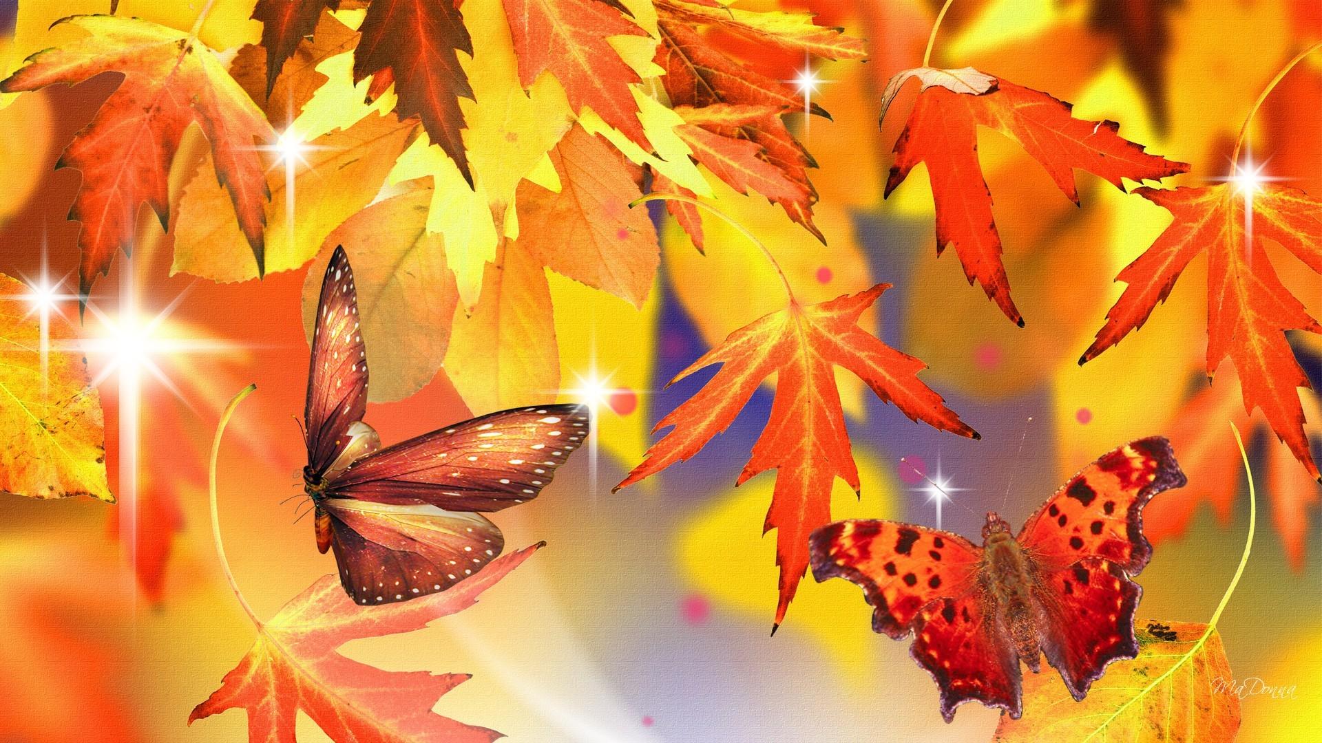 Autumn Leaves and Butterflies HD Wallpaper.
