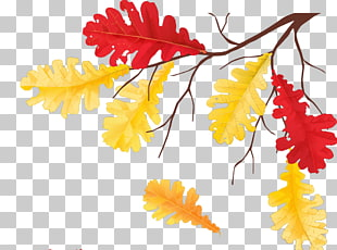 56 Autumn Equinox PNG cliparts for free download.