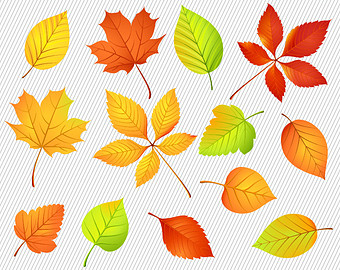 Autumn Leaves Clipart.