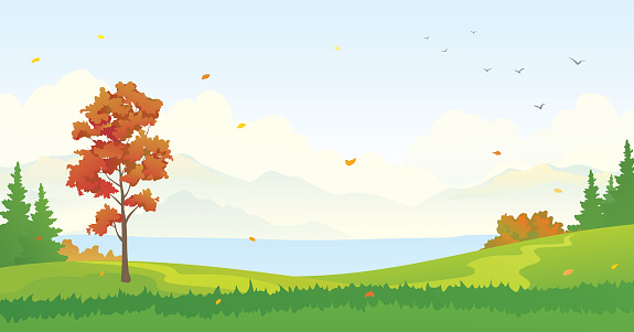 Forest autumn clipart.