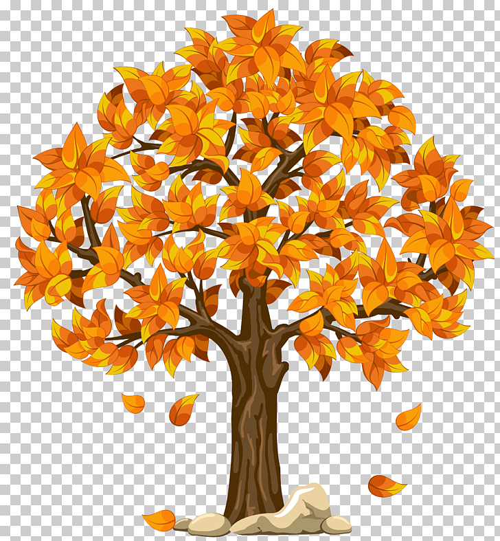 Autumn Tree , Transparent Fall Orange , orange leaf tree.