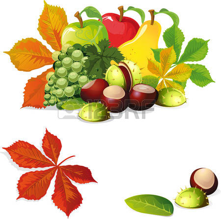 69,752 Autumn Fruit Stock Vector Illustration And Royalty Free.