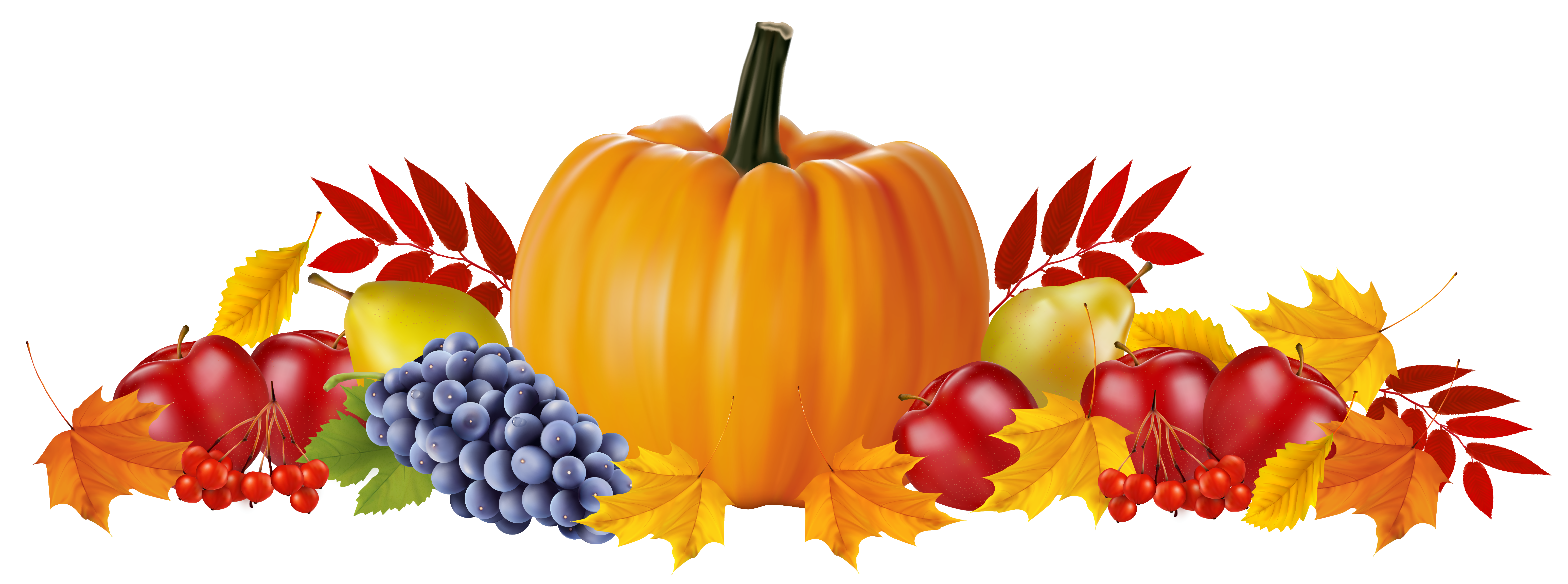 Autumn Fruits and Leaves PNG Clipart Image.