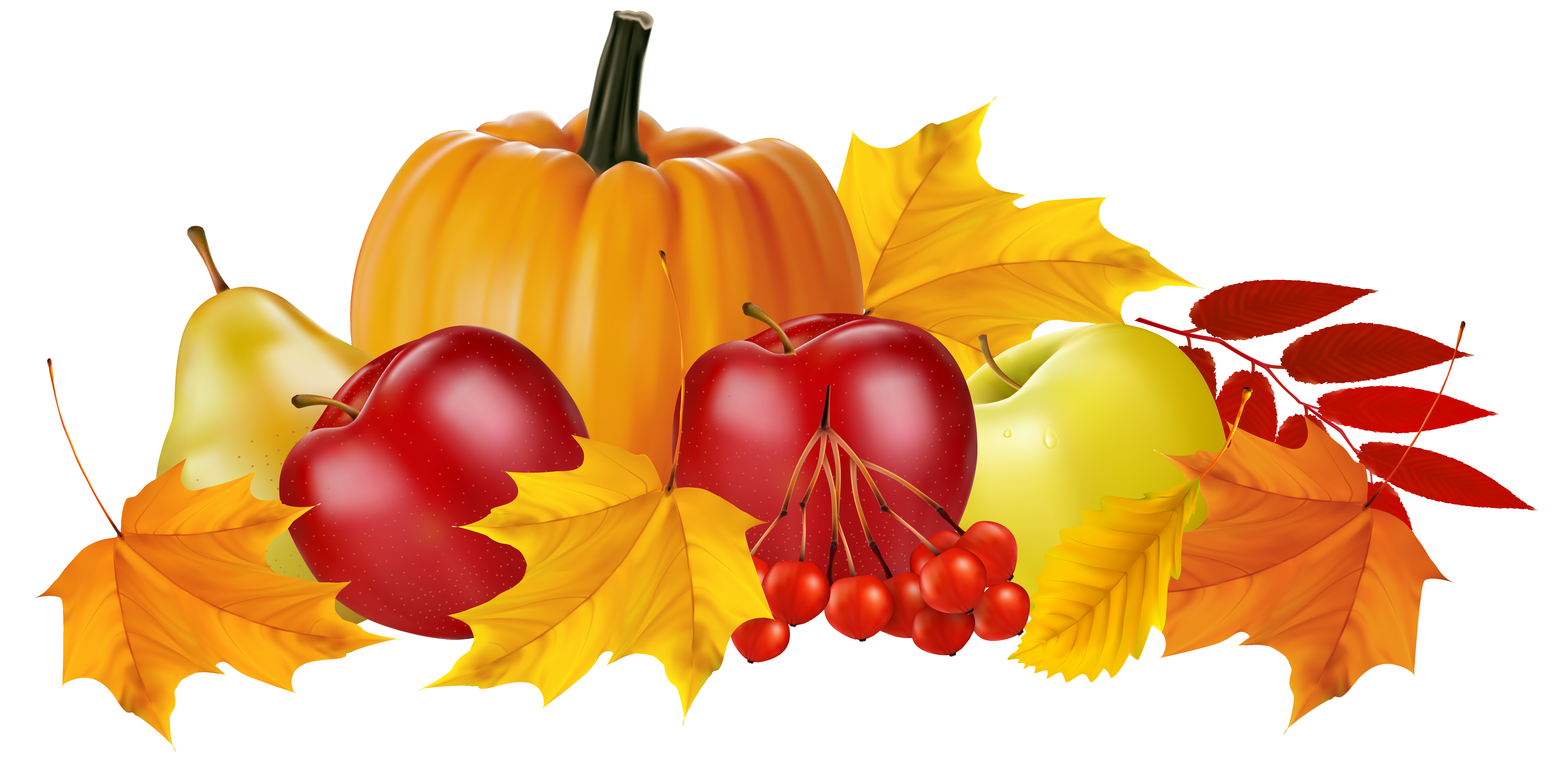 Autumn Pumpkin and Fruits PNG Clipart Image.