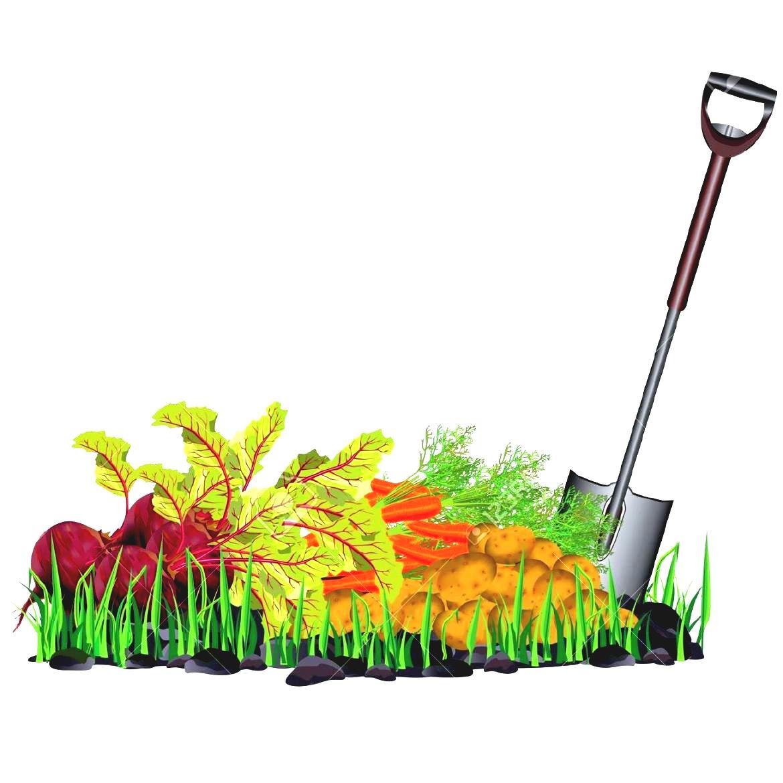 Autumn yard tools clipart.
