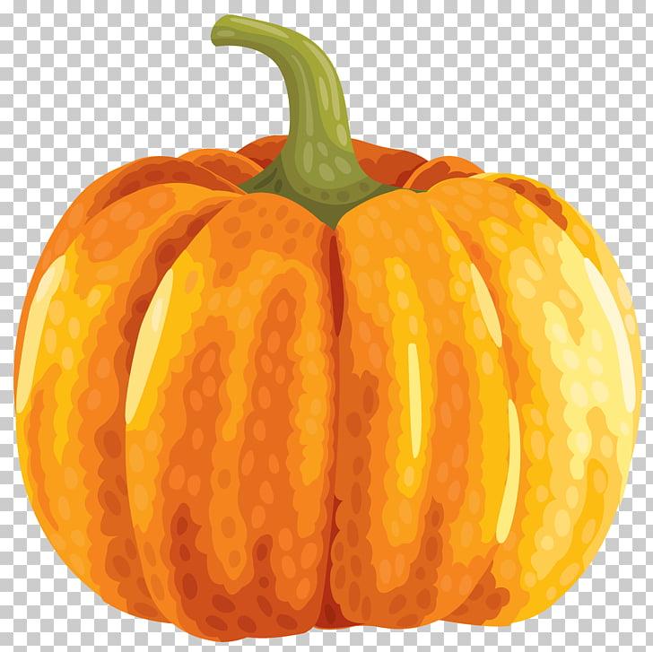 Field pumpkin , Large Autumn Pumpkin , pumpkin PNG clipart.