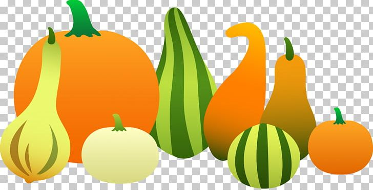 Gourd Pumpkin Vegetable PNG, Clipart, Art, Autumn, Calabash.