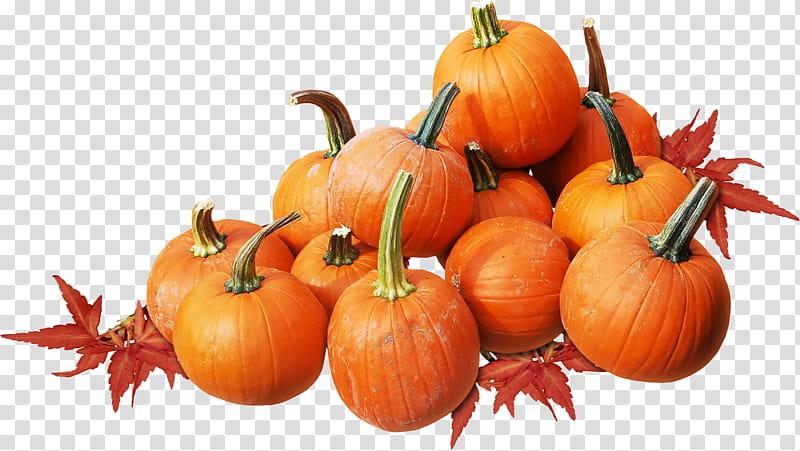 Autumn, pumpkin lot transparent background PNG clipart.