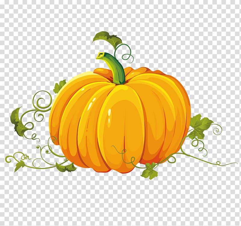 Pumpkin Autumn Harvest , Hand painted pumpkin Teng.