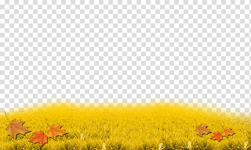 autumn grass clipart transparent #10