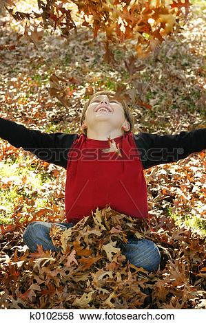 Pictures of Autumn Joy k0102558.