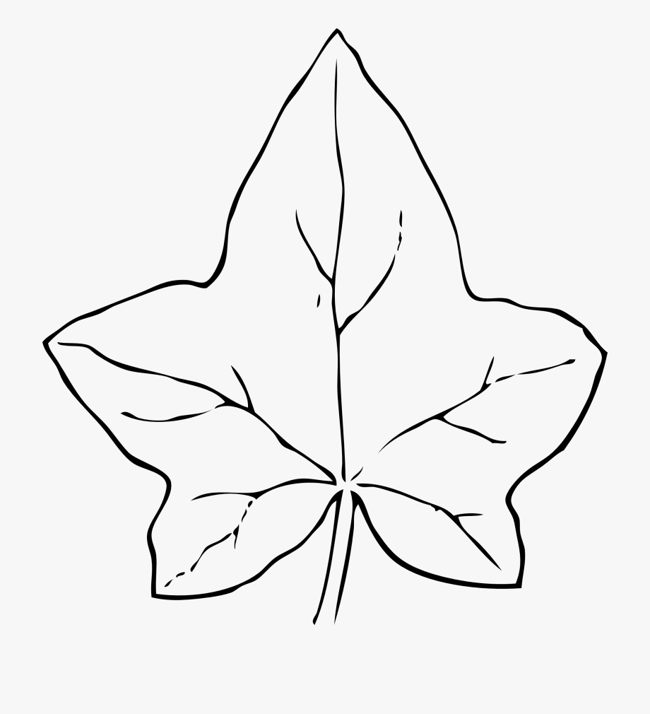 Leaf Black And White Fall Leaves Clipart Black And.