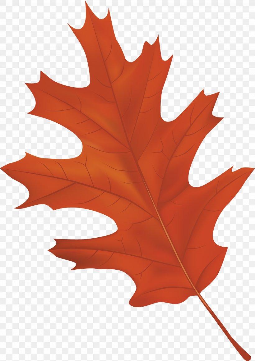 Autumn Leaf Color Clip Art, PNG, 3735x5295px, Autumn Leaf.