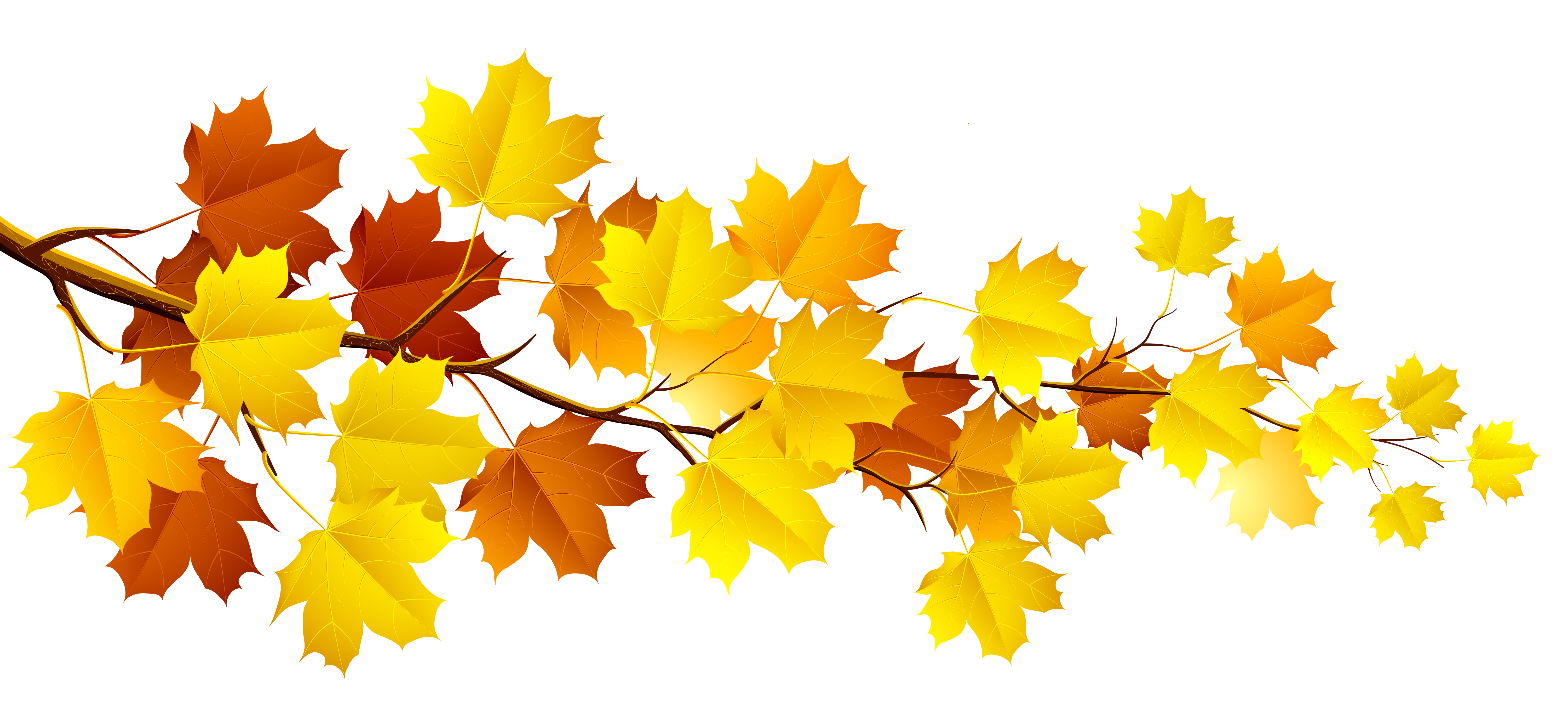 Fall leaves clipart free clipart images 3 clipartcow.
