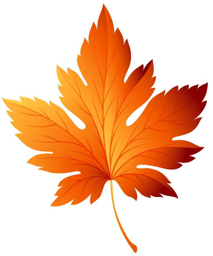Image result for free clipart autumn leaves.