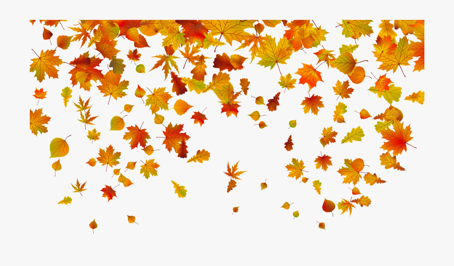 Beautiful Falling Leaves Clipart Fall Leaves Border.