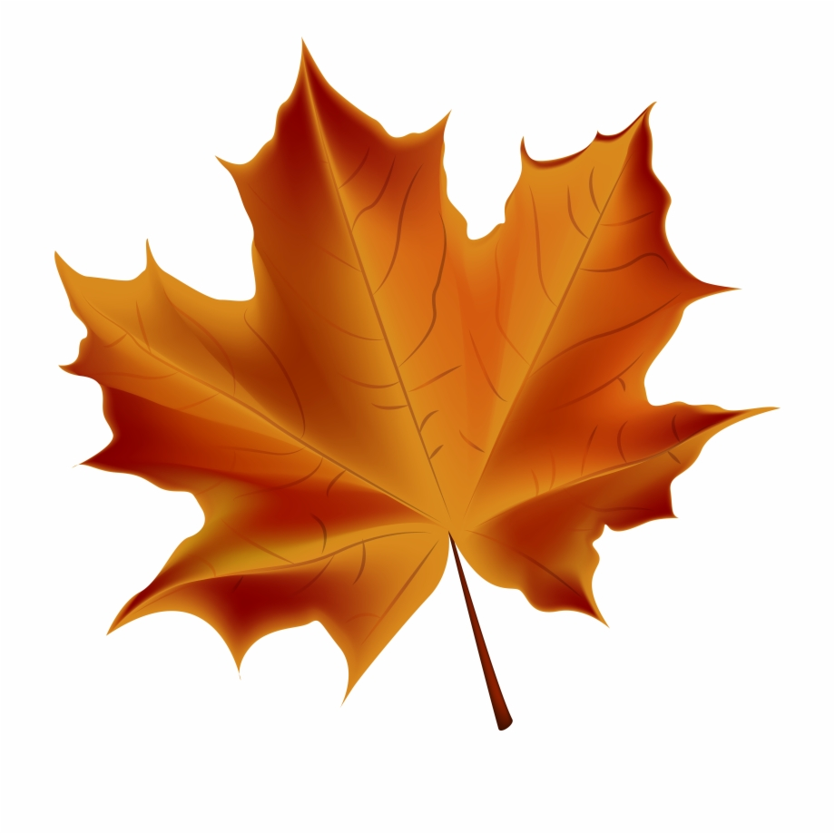 Free Fall Leaves Png Transparent, Download Free Clip Art.
