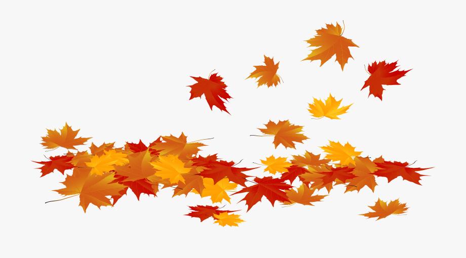 Fallen Autumn Leaves Png Clip Art Image.