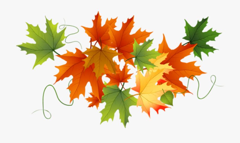Autumn Leaves Clipart Transparent Background , Transparent.