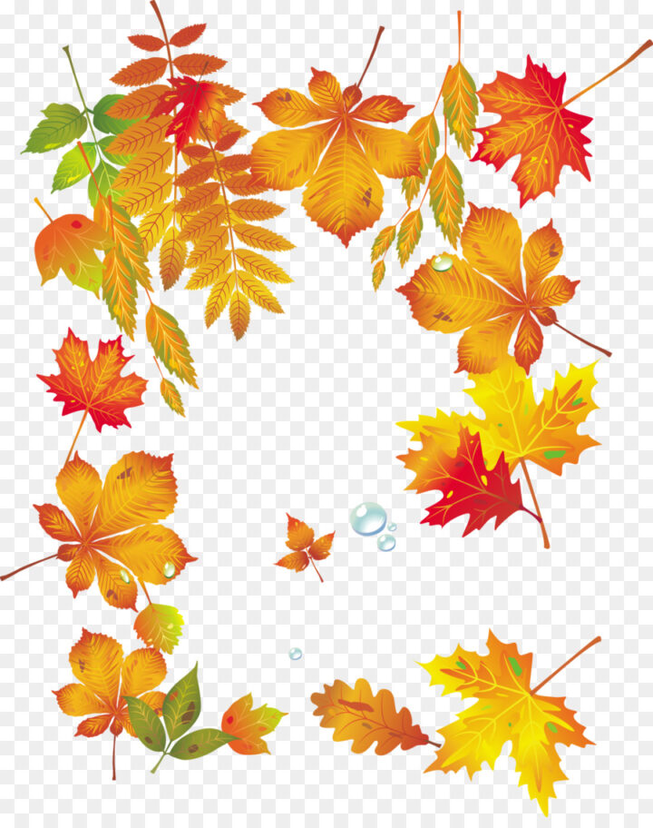Falling Leaves Gif Also Autumn Leaf Together With Autumn.
