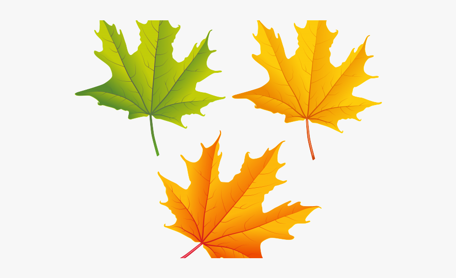Fall Leaves Clip Art Group (+), HD Clipart.
