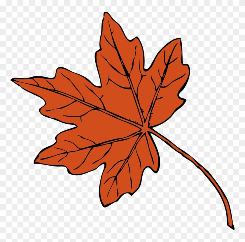 Fall Drawing Autumn Leaves.