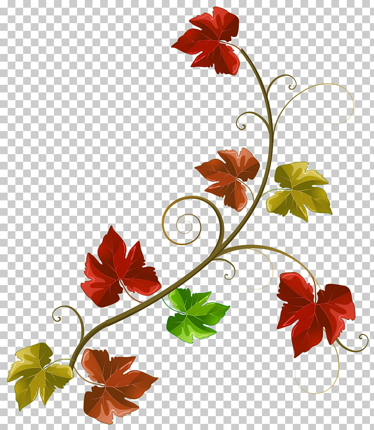 Autumn , Autumn Leaves Decoration , red and green flower.