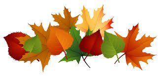 Image result for clip art fall.