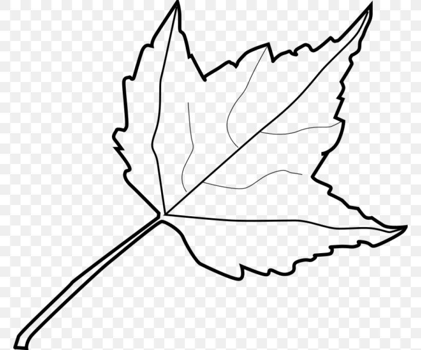 Autumn Leaf Color Outline Clip Art, PNG, 768x683px, Leaf.