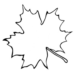Leaf Outline PNG.