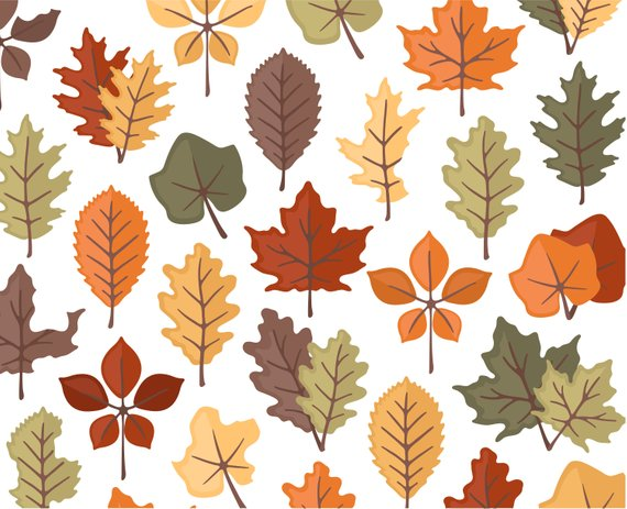 Autumn Leaves Clipart, Fall Clipart, Thanksgiving Clipart.