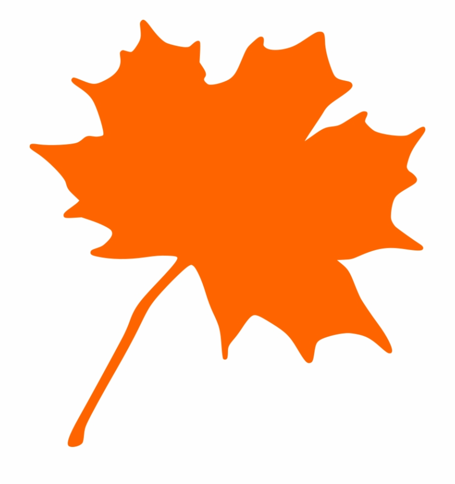 Autumn Leaf Clip Art Clipart Maple Leaf.