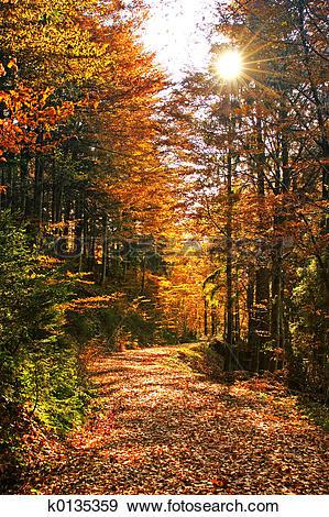 Stock Photograph of Autumns k0135359.