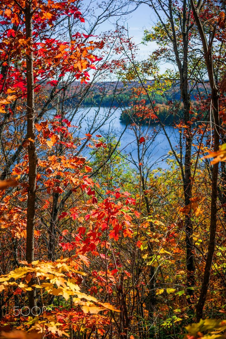 1000+ ideas about Autumn Pictures on Pinterest.