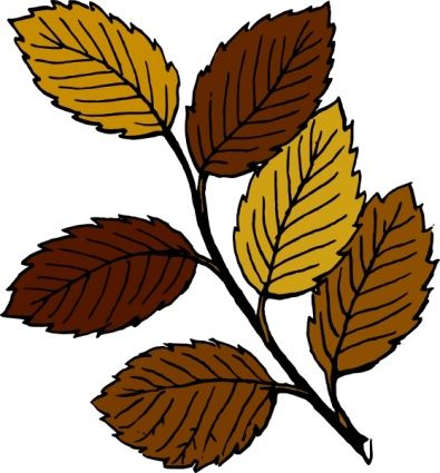Autumn Nature Borders Clipart.